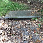 Storm Drains at 308 MILSTEAD RD