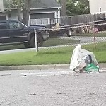 Litter/Illegal Dumping at 100 HAZELWOOD CT