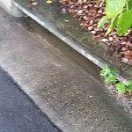 Storm Drains at 910 WOODCREEK DR
