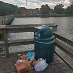 Litter/Illegal Dumping at 223 RIVER RD