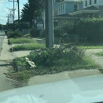 Litter/Illegal Dumping at 1211 27 Th St