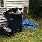 Litter/Illegal Dumping at 556 40 Th St